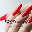 PROFI master (Vilnius, spalio 4 - 8 d.)